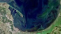 Sinice w Bałtyku widziane z kosmosu. Ekspert ostrzega przed wypoczynkiem nad morzem