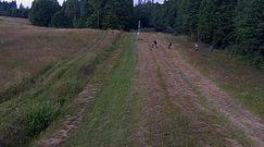 Kryzys na Litwie. Wprowadzili kontrowersyjne prawo, umacniają granicę