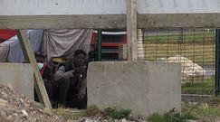 """""""Polowanie"""" na ciężarówki. Zobacz nagranie z Calais"""
