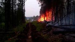 Pożary w Rosji nie ustępują. Trwają akcje ewakuacyjne na Syberii