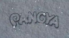Pangya: Ice Cannon