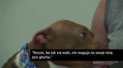 Niesłysząca kobieta przygarnęła głuchego psa