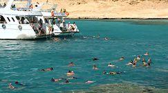 Egipt, Turcja i Tunezja. Czeka nas wielki powrót podróżniczych hitów sprzed lat