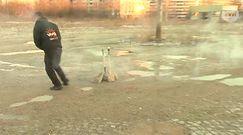 Fajerwerki wyrzucane do śmietnika mogą uszkodzić auto
