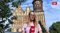 Z wizytą w Kaliningradzie. Co miasto oferuje turystom?