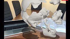 Prezentacja wirtualnego modelu, który posłużył do wyprodukowania czaszek Sculo
