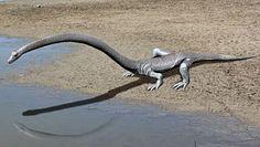 Dinozaur z bardzo długa szyją jednak żył pod wodą. Szwajcarscy naukowcy potwierdzają