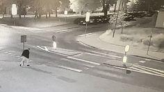 Pijany podszedł do znaku drogowego. Niecodzienny wybryk nagrała świętokrzyska policja