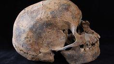 Najstarszy konflikt rasowy. Nowe badania prehistorycznych kości z Sudanu zaskakują