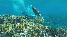 Wrak z dna Karaibów. Znaleźli go po 200 latach