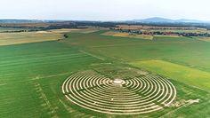 Dolny Śląsk. Gigantyczny labirynt na polu kukurydzy w Milikowicach