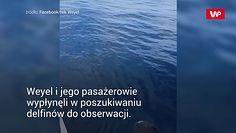 Spotkanie z morskim gigantem. Ekscytacja w sieci