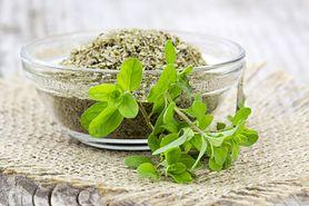 Majeranek – wartości odżywcze, zastosowanie w kuchni, właściwości lecznicze, olej, napar