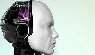 Jak w Polsce produkuje się ludzkie roboty?