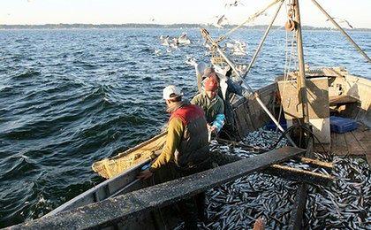 Zakończył się protest rybaków na Zatoce Gdańskiej