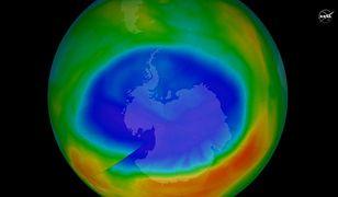 Dziura ozonowa może zniknąć około 2060 roku