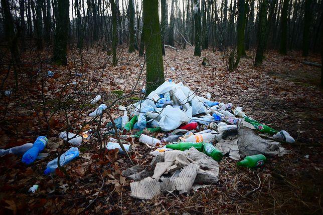 Zaczyna się od papierka po lodach. Kończy na kontenerach gruzu. Lasy wciąż toną w śmieciach