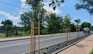 Czechowice-Dziedzice. Nowe rondo na drodze do rafinerii. Komfortowo i bezpieczniej