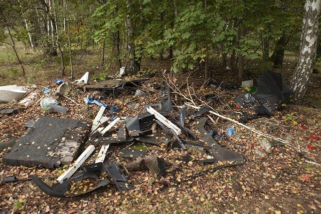 Polskie lasy toną w śmieciach (zdjęcie ilustracyjne)