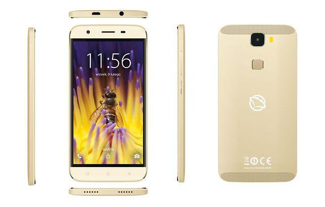 Manta Quad Titan MSP 95009 Bee - test telefonu o bardzo długiej nazwie