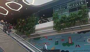 W pierwszym w Polsce sklepie sieci Primark trwają prace wykończeniowe