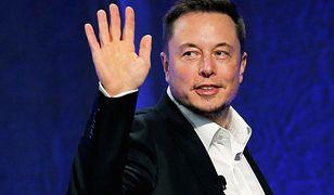 W Twitterze może być tylko jeden Elon Musk