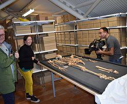 Masakra w Danii. Fenomenalne odkrycie naukowców w szkielecie wikinga