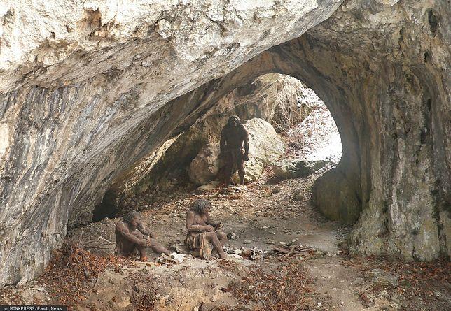 Neandertalskie obozowisko - wygląd przykładowy.