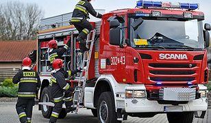Pożar w Łebieniu. Zginęło ponad 200 zwierząt