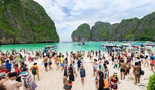 Plaża zostanie tymczasowo zamknięta, aby ochronić przyrodę i umożliwić rafie koralowej regenerację