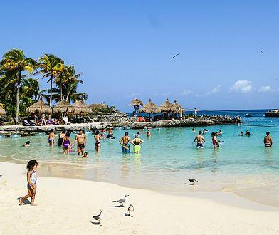 Pół roku w raju i za dobre wynagrodzenie. Cancun szuka pracownika.