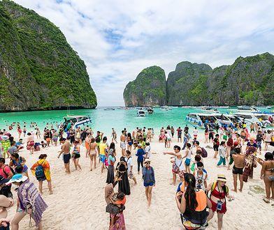 Plażę odwiedzało ok. 5 tys osób dziennie