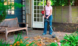 Jesień w ogrodzie: jak szybko pozbyć się liści?
