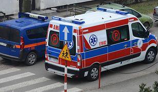 Kałuża krwi po ataku psa na kobietę w Miliczu. Właściciel był pijany