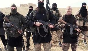 Szwecja: w kraju żyje 3 tys. ekstremistów. Dużo więcej niż w 2010 r.