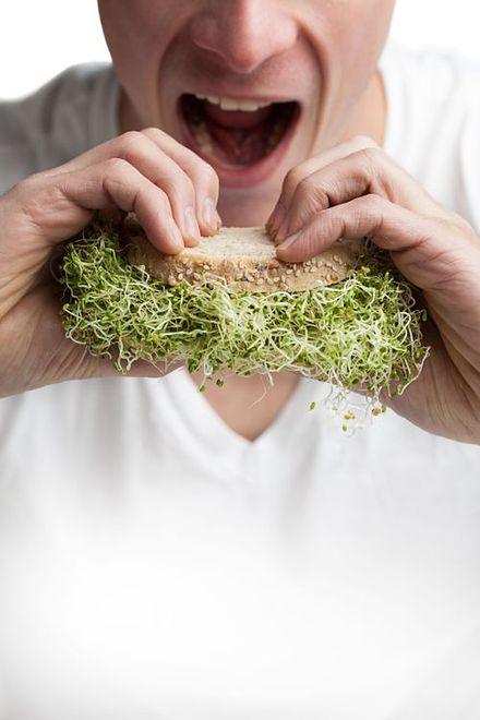 Dlaczego warto jeść kiełki?