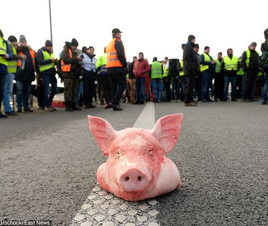 Protest rolników przejdzie ulicami stolicy w środę 6 lutego.