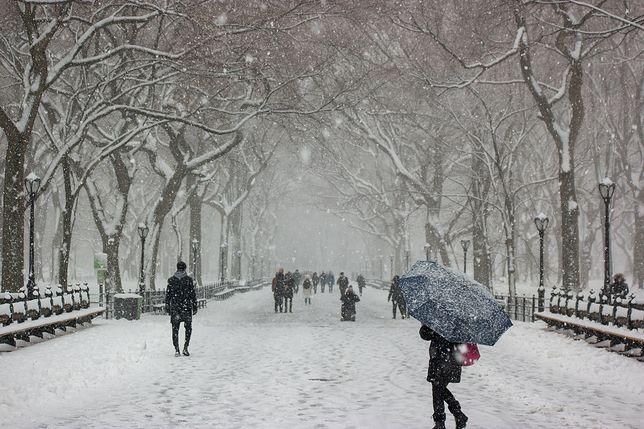Pogoda długoterminowa na jesień i zimę. Prognozy są zaskakująco spójne