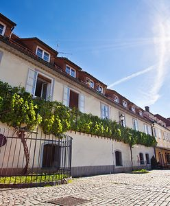 Duma Słowenii na licytacji WOŚP. Wino, którego nie można kupić