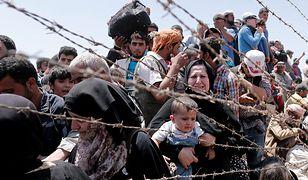 Niemiecka prasa donosi o nowym szlaku uchodźczym. Może prowadzić przez Polskę