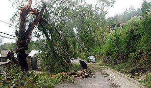 Tropikalna burza Hanna zabiła 10 osób