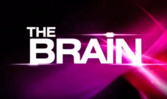 """The Brain"": Polsat pracuje nad polską edycją programu"
