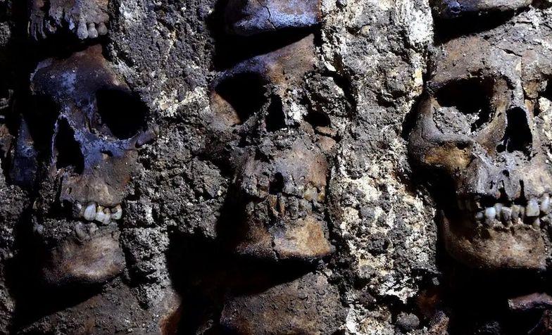 Odkryto kolejnych 119. Przerażające znalezisko podczas prac remontowych