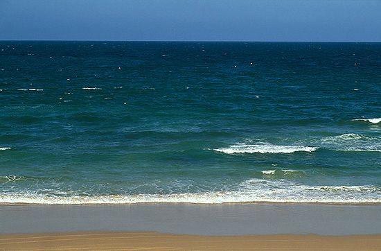 Dzień Morza Bałtyckiego