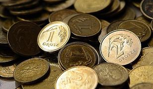 Belka nie finansuje deficytu przez wymianę stuzłotówek