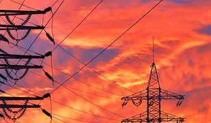 Jak oszczędzić na rachunkach za energię elektryczną? Prąd nie musi być drogi...