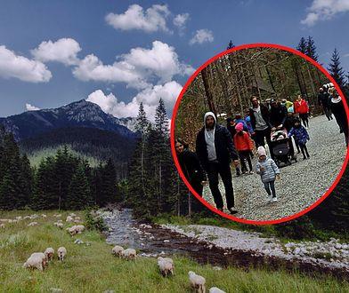 Koronawirus nie odstrasza turystów. Niepokojący widok w Tatrach