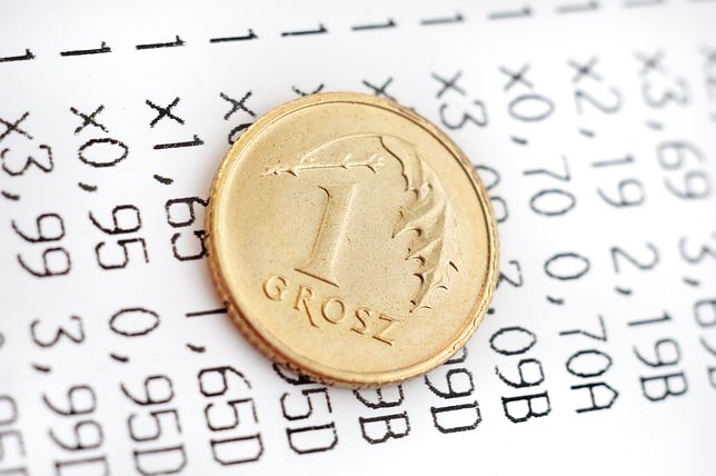 Groszowe emerytury, dosłownie, to problem dla ubezpieczonych, jak i ZUS.