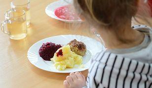 Salmonella w cateringu dla żłobków