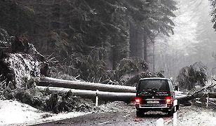 Atak zimy - awarie i utrudnienia na drogach